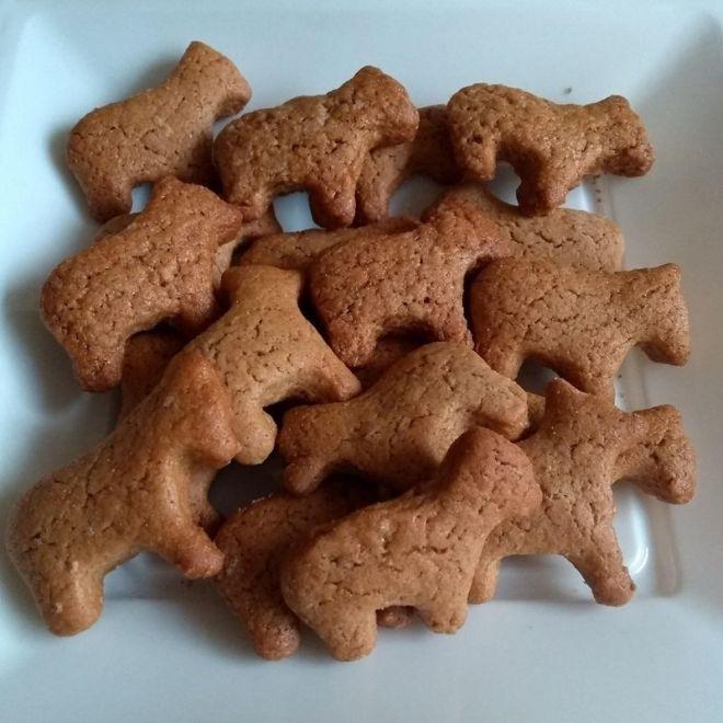 homemade honey cinnamon dog cookies recipe