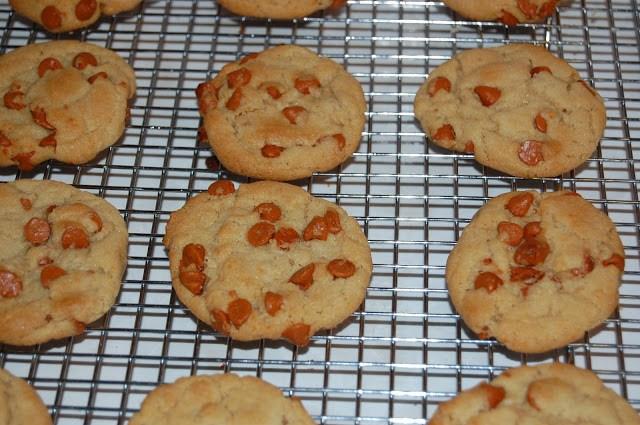 Cinnamon Chip Cookies by Whatever Dee Dee Wants