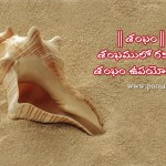 significance of conch or shankha