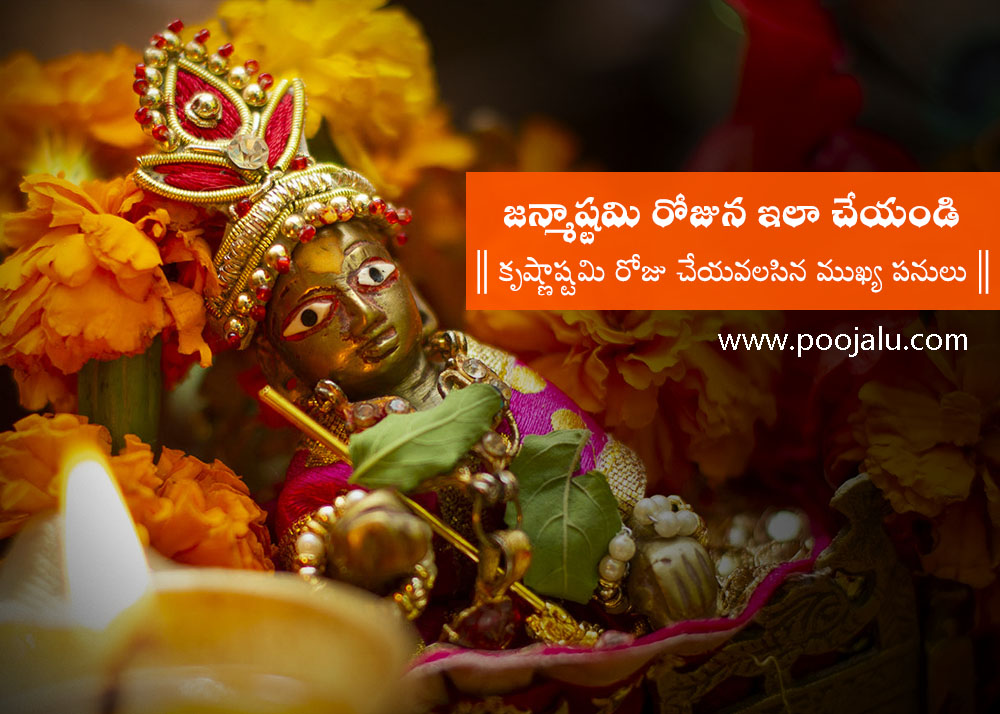 what-to-do-on-krishna-janmashtami