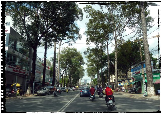 Tree Lined Roads of HCMC