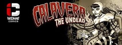 Calavera Banner