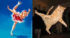 Cats that look like pinups (6)
