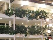 Cosawesome 4 hotel (5)