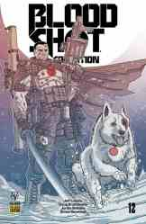 Bloodshot Salvation #12 - Pre-Order Edition Variant by Ryan Bodenheim