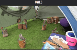 For the Love of Fantasy attractions owls