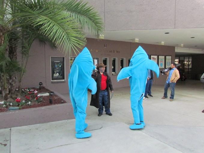 katti-perry-sharks