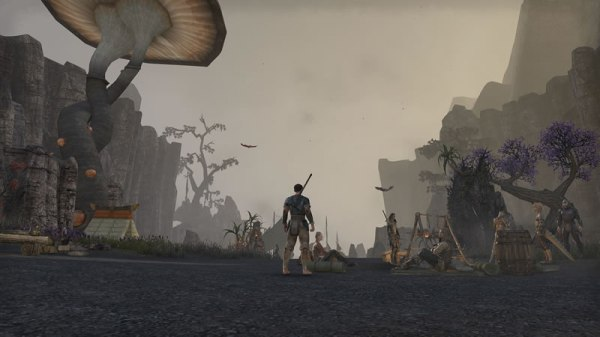 TESO Beta Hands On Screen Shot (16)