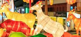 Chinatown Chinese New Year Light Up 2015