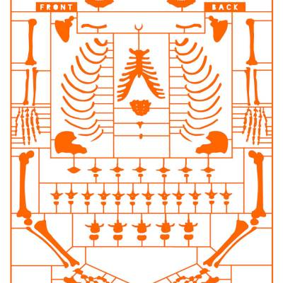 Anatomy of a politician – giclee orange