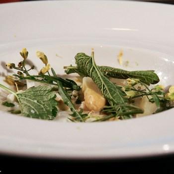 Asparagi bianchi, mozzarella, erbe