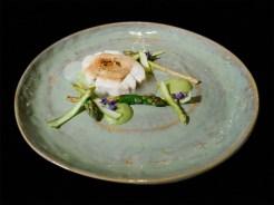 Bianco di branzino, pinoli e asparagi