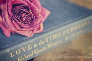 love-in-the-time-of-cholera-danielle-davies