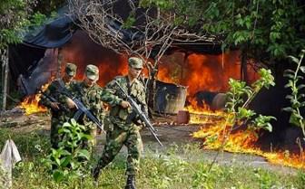 Nel tentativo di combattere le Farc talvolta l'esercito arriva a distruggere interi villaggi.