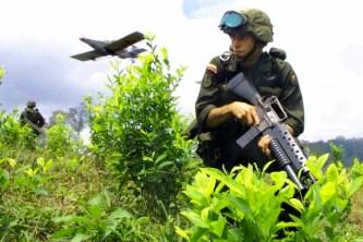Azione in coordinamento tra l'esercito colombiano e la Cia. L'aereo sgancia una sostanza defogliante con lo scopo di distruggere i campi di cocaina.