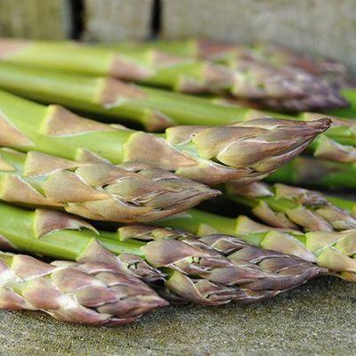 Asparagus Convers Colosal