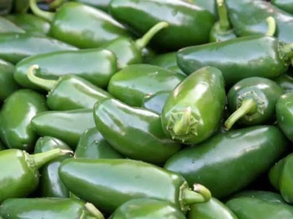 Hot Chilli Jalapeno