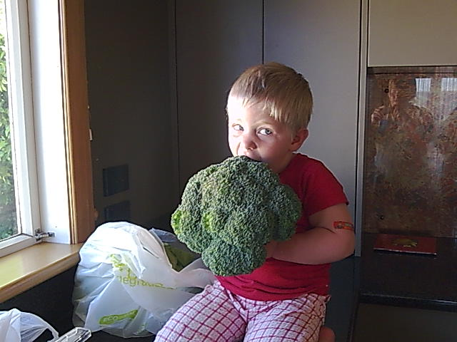 Biggest Brocolli!