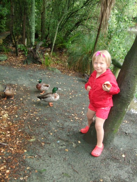 Poppy talks to ducks