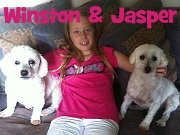 winston&jasper