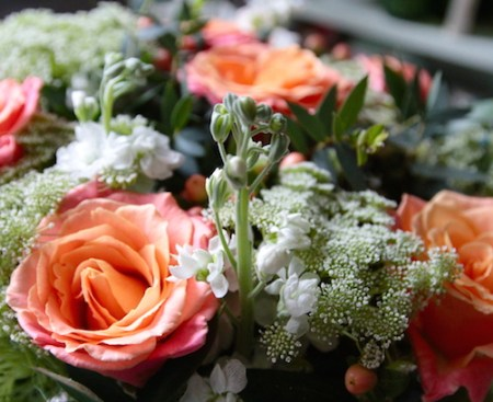 Appleyard Flowers - Poppy Loves