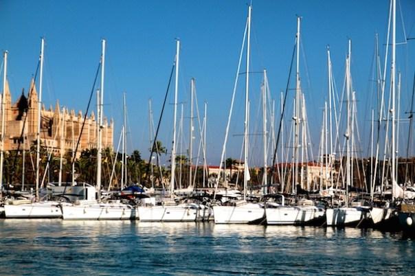 The marina in Palma
