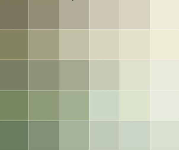 Deluxe Colour Palette