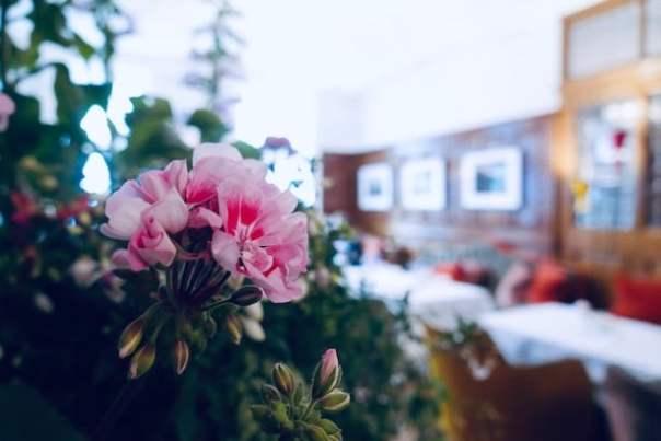 Brown's-Hotel-Ormonde-Jayne-Chelsea-Afternoon-Tea-30