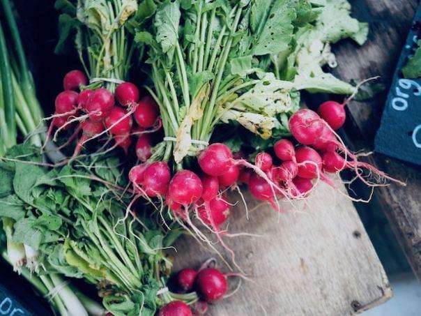 Farmers-Market-Walthamstow-9