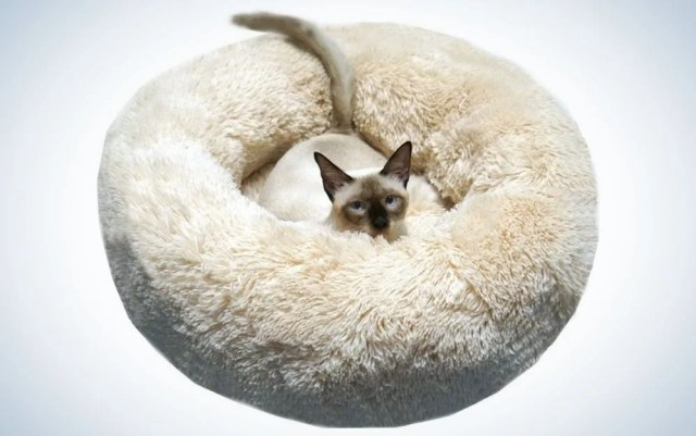Beige soft plush round cat bed with a small cat in it