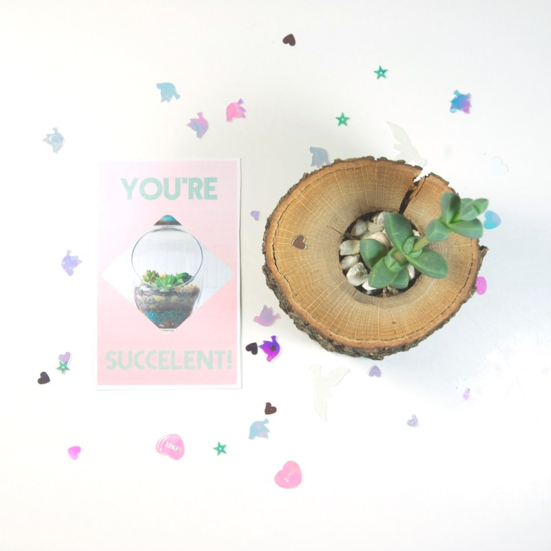Terrarium Printable Valentine Cards - Pop Shop America DIY Blog