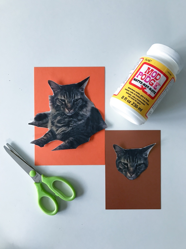 #shop how to make halloween inspired cards with your cats pop shop america