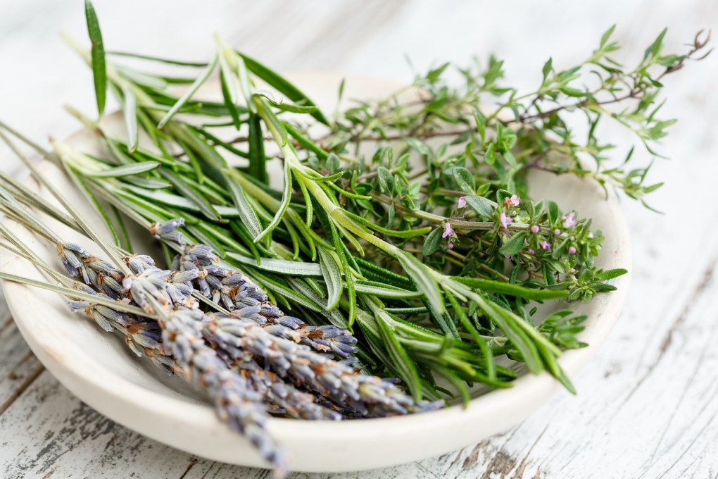 lavender and other herbs for lavender candle tutorial pop shop america