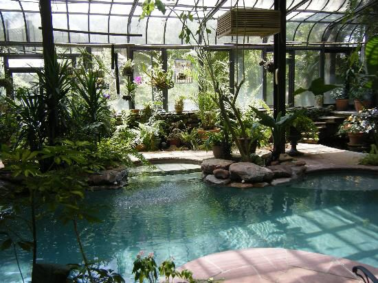 indoor pool with atrium best greenhouses best conservatories