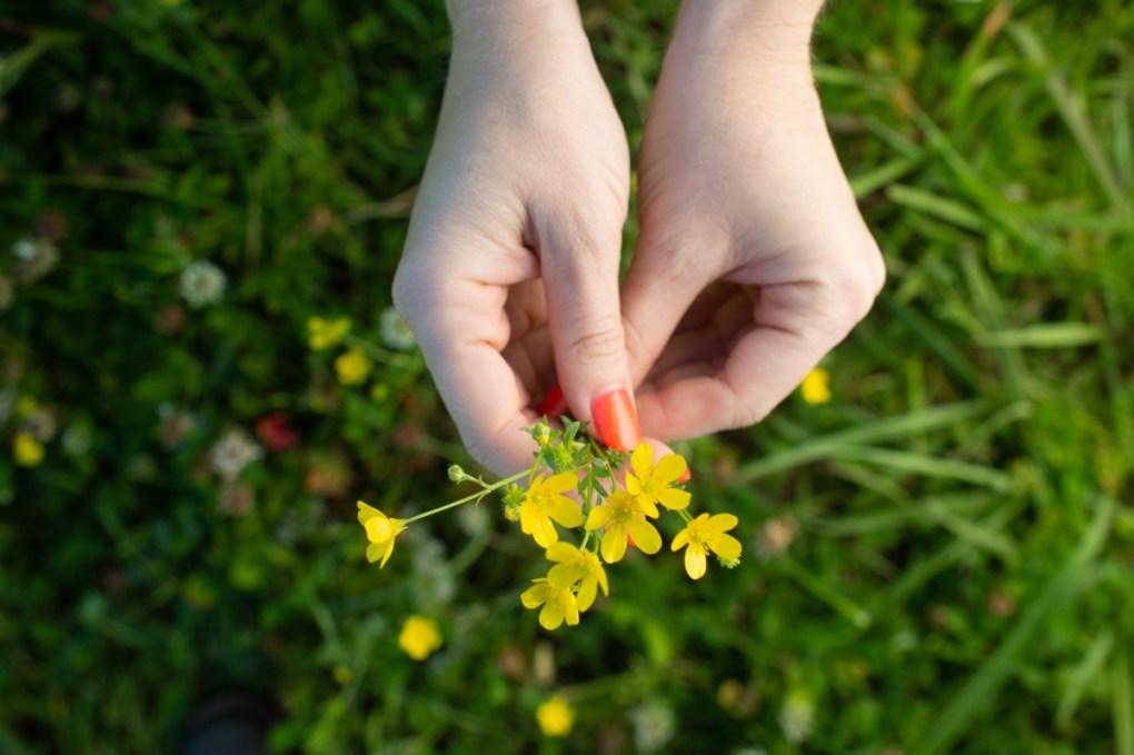 picking-texas-weeds-wildflower-crowns-pop-shop-america