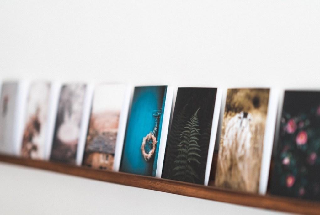 flower art print shelf - home design pop shop america