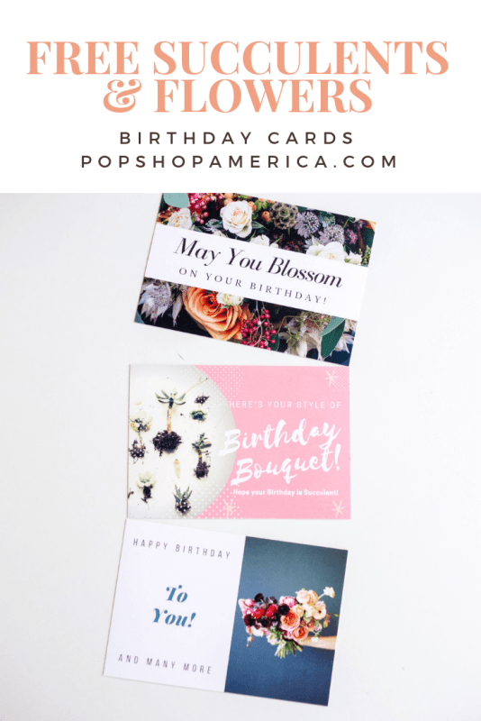 free birthday cards with succulents and flowers pop shop america