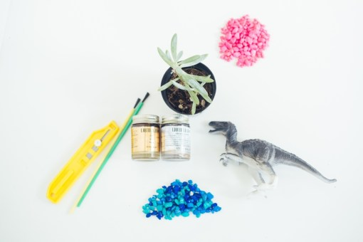 supplies to make a succulent planter with a dinosaur toy