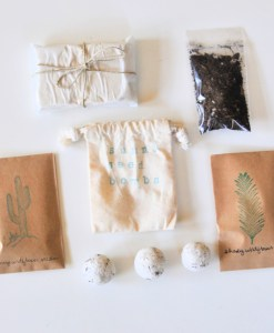 diy seed bombs craft supply kit pop shop america blog