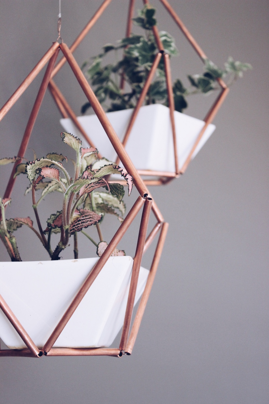 DIY-Copper-Himmeli-Hanging-Planter-Hello-Lovely-Living