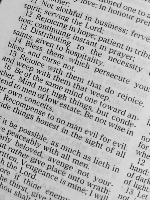 Drink Pray Love Bible Study
