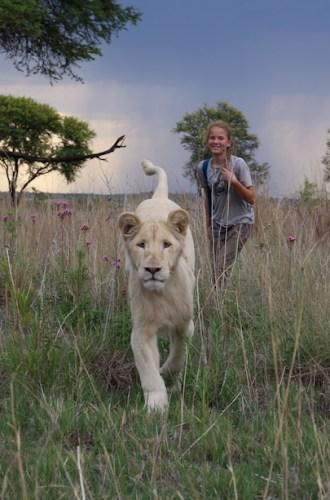 Mia and the White Lion {Enter to Win}