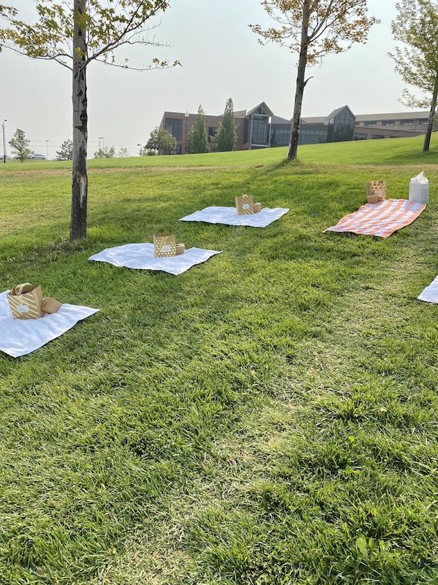 Quarantine birthday picnic