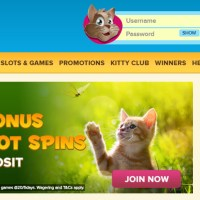Kitty Bingo Outshines Bingo Sites In UK