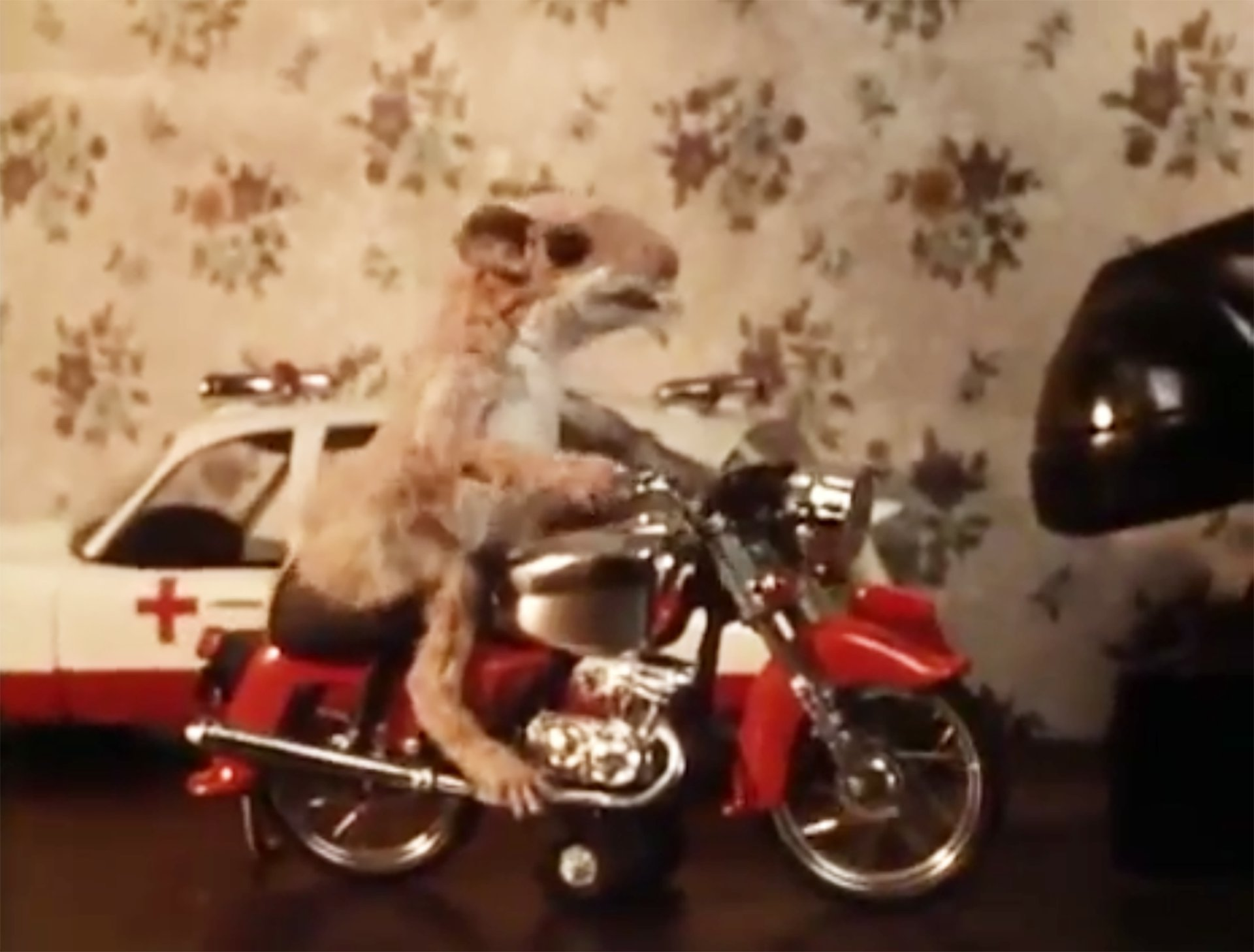 The Mouse And The Motorcycle Movie Reviews