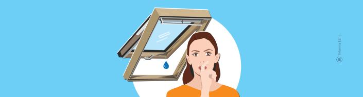Strešna okna - vzdrževanje / Porabimanj INFO