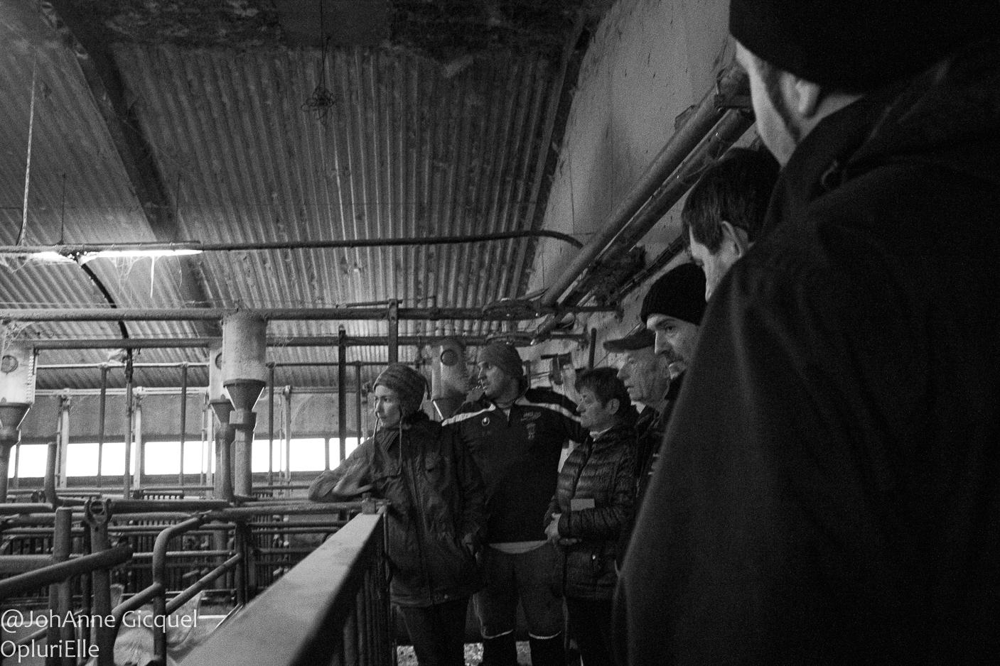 bâtiment des gestantes - visite du gros chêne Pontivy - porc sur paille - coherence