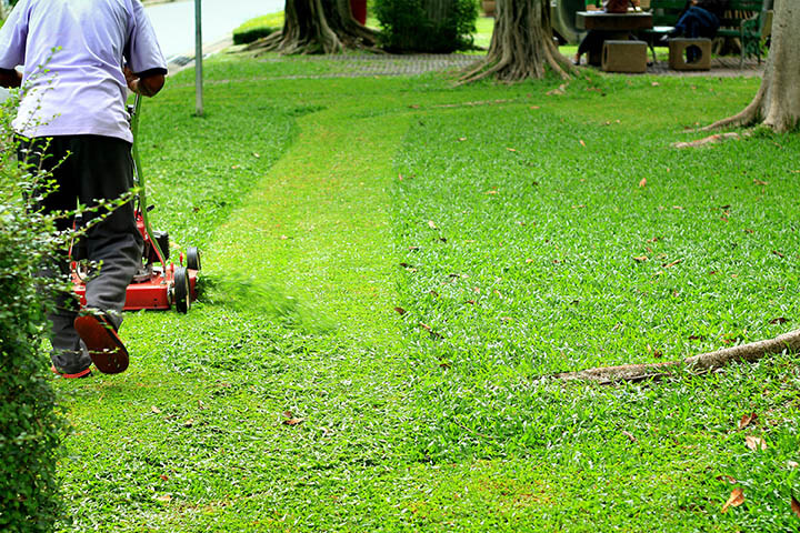 best mulching blades for lawn mowers
