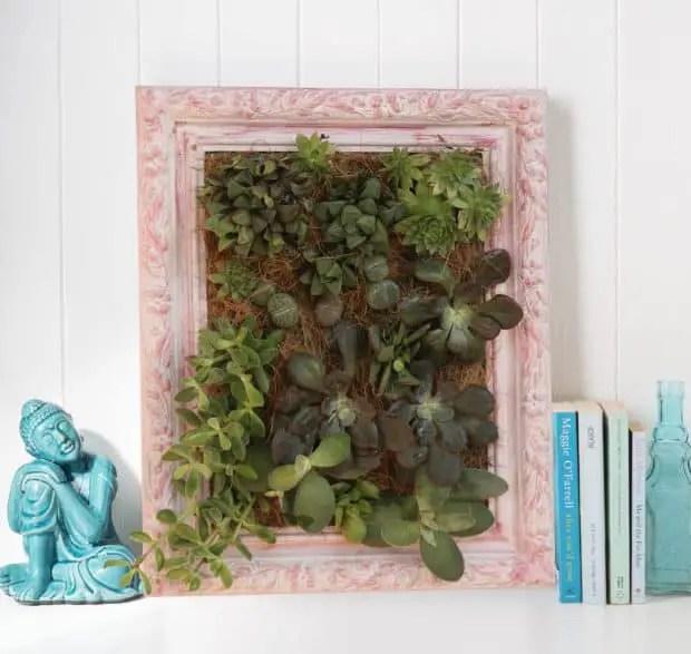 cuadro vivo con plantas crasas