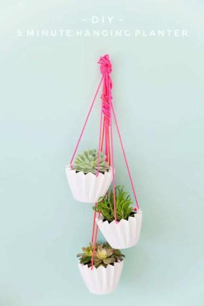 Macetas colgantes para plantas crasas